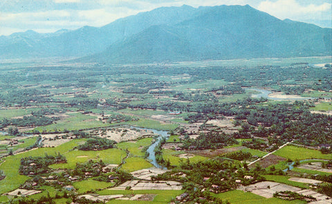 Aerial View of Viet-Nam,central area vintage postcard