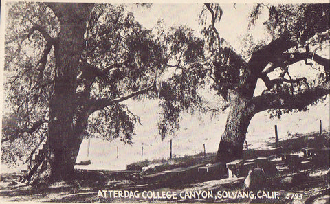 Atterdag College Canyon-Solvang,California - Cakcollectibles - 1