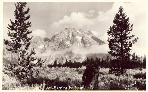 Early Morning,Mt. Moran  - Wyoming.Front of real photo postcard