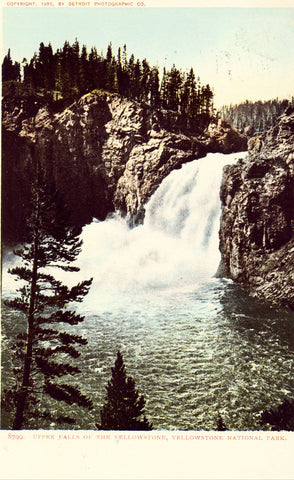 Upper Falls of The Yellowstone - Yellowstone National Park.Front of old postcard