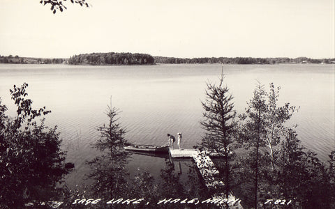 Sage Lake - Hale,Michigan.Front of real photo postcard