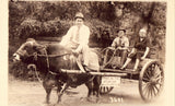 Man and Woman Riding in Cow Pulled Cart - Arkansas Photo postcard front