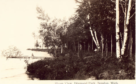 Shore View,Diamond Park - Bendon,Michigan.Photo postcard front