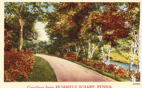 Linen postcard front Greetings from Hummels Wharf,Pennsylavnia
