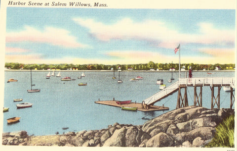Linen postcard front Harbor Scene at Salem Willows,Massachusetts
