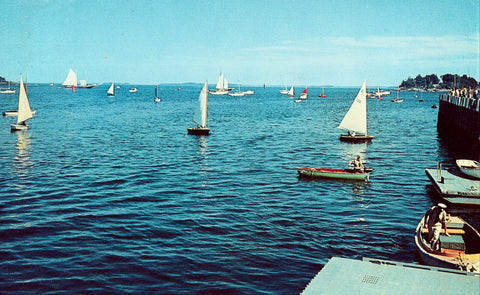 Vintage postcard front Boats on Outer Harbor,Camden,Maine