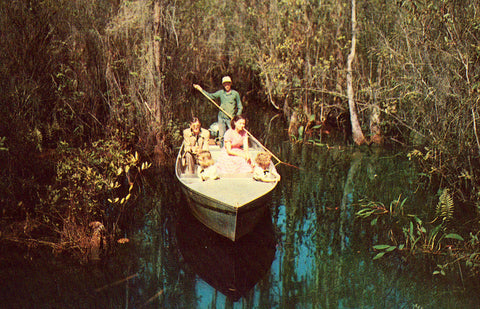 Vintage postcard front.Guide Boat on Okefenokee Swamp Park - Waycross,Georgia