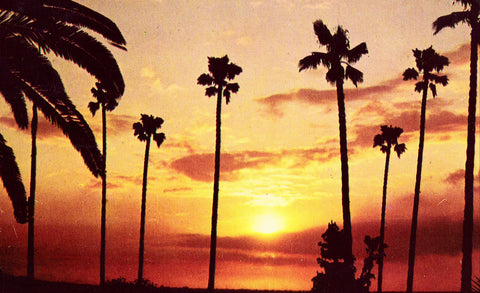 Vintage Postcard - A California Sunset