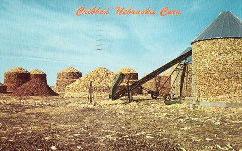 Vintage Postcard Front - Cribbed Corn in Nebraska