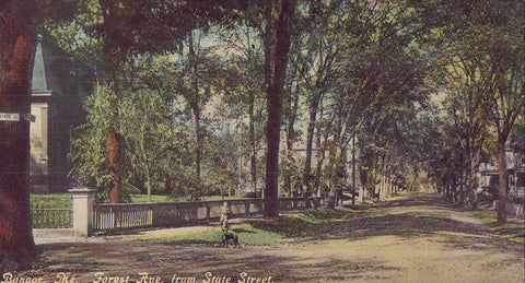 Forest Avenue from State Street-Bangor,Maine 1910 - Cakcollectibles - 1