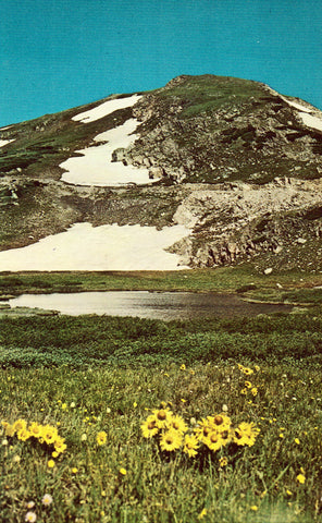 Vintage postcard front An Alpine Lake near The Continental Divide in Rocky Mountain National Park - Colorado