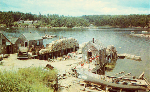 A Typical Maine Fishing Village Vintage Postcard Front
