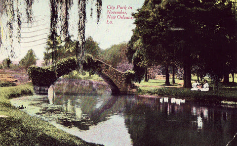 City Park in November - New Orleans,Louisiana.Vintage postcard front