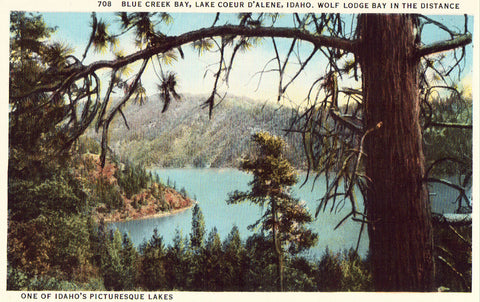 Blue Creek Bay,Lake Coeur D'Alene,Idaho. Linen postcard front