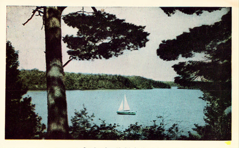 Vintage postcard front. Greetings from Blackduck,Minnesota