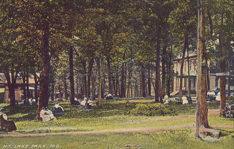 View in Mt. Lake Park-Maryland 1917 - Cakcollectibles - 1
