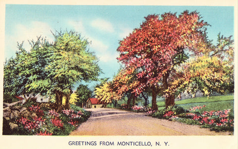 Linen Postcard Front - Greetings from Monticello,New York