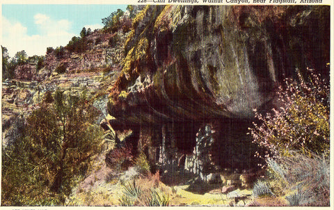 Linen postcard front. Cliff Dwellings - Walnut Canyon near Flagstaff,Arizona