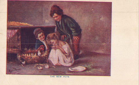 Early Post Card-The New Pets-Children with Baby Chicks 1908