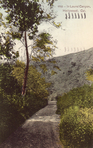 Vintage postcard front View in Laurel Canyon - Hollywood,California