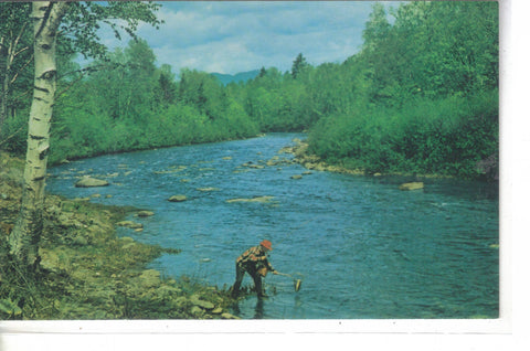 Fishing The Carrabasset River - Maine - Cakcollectibles