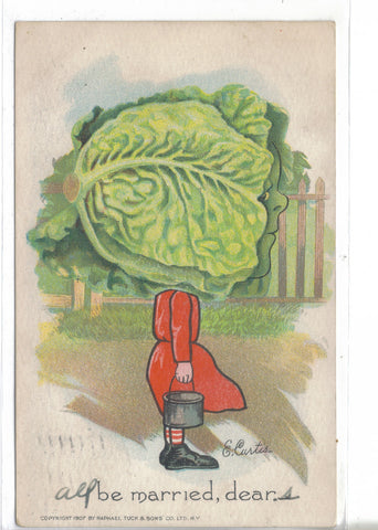 Tuck's Garden Patch Post Card-Cabbage Head-be married,dear-E. Curtis 1908 - Cakcollectibles - 1