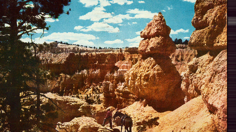 Vintage postcard Saddle Horse Trail - Bryce Canyon National Park - Utah