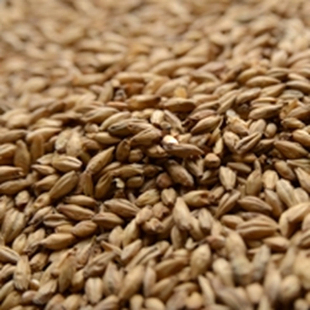 Briess 2-Row Brewer's Malt