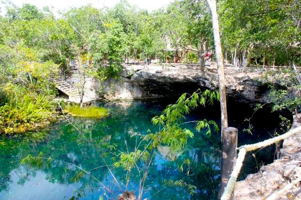 Cenotes in playa del carmen playa vacation for Cancion en el jardin del eden