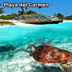 general information about Playa del Carmen, Mexico