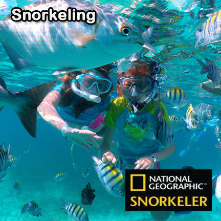 Snorkeling Tour - Private - Playa Vacation