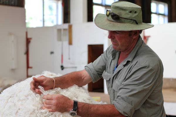 ZQ-certified merino sorting high-quality ethical wool