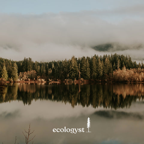 ecologyst | Sitka | new name