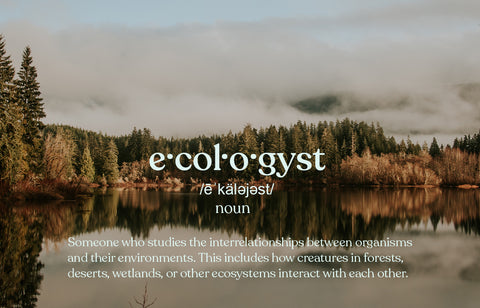 ecologyst | sitka canada | sustainable clothing | made in canada
