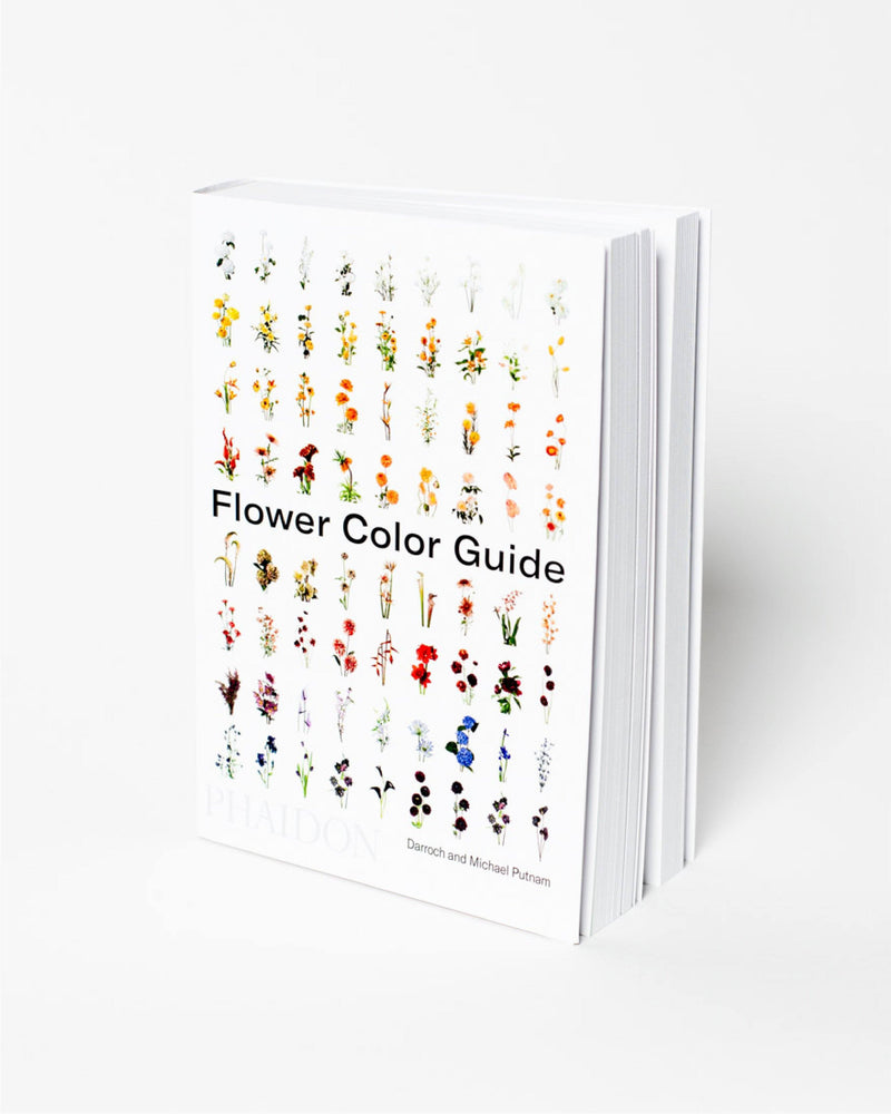 Flower Color Guide - All - Hero