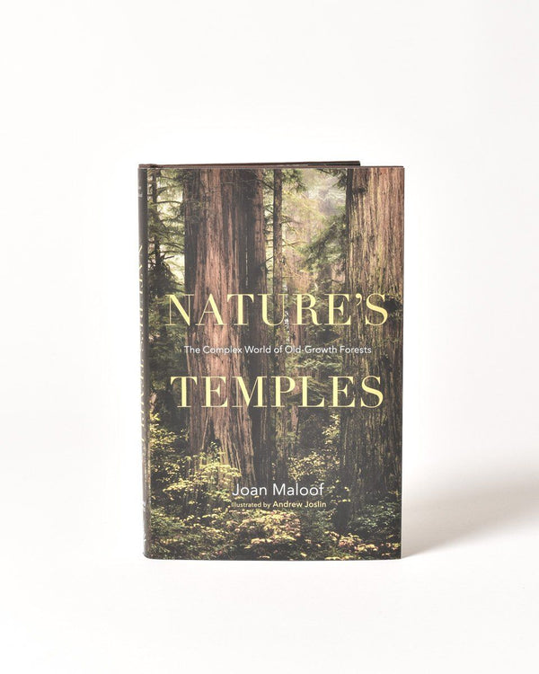 Natures Temples - Joan Maloof - Old Growth Forests - Trees - PNW