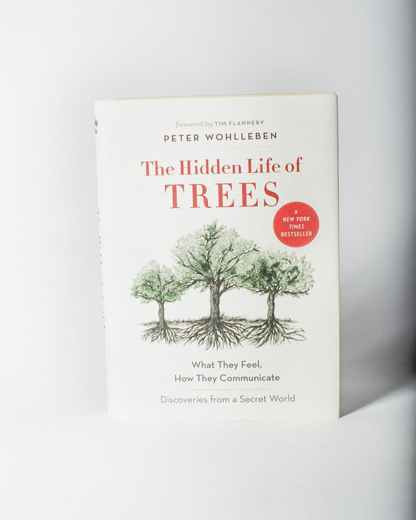 The Hidden Life of Trees What They Feel How They Communicate Discoveries From A Secret World Author Peter Wohlleben Forward Tim Flannery - All - Hero