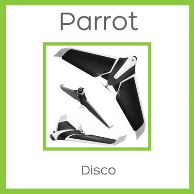 Parrot Disco - D W-P Enterprises LTD - 1