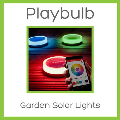 Playbulb Garden Solar Lights - D W-P Enterprises LTD - 1