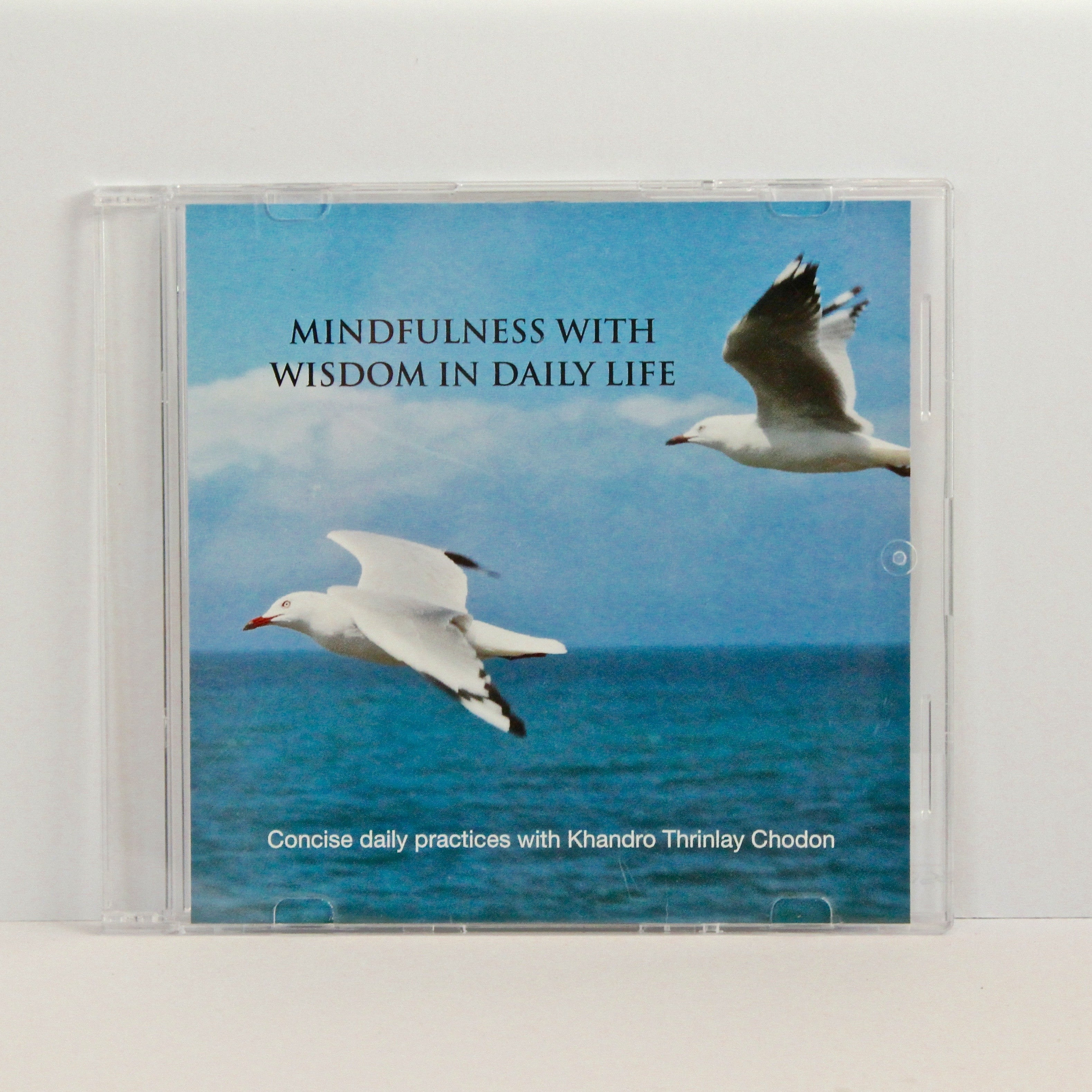 Mindfulness with Wisdom in Daily Life CD