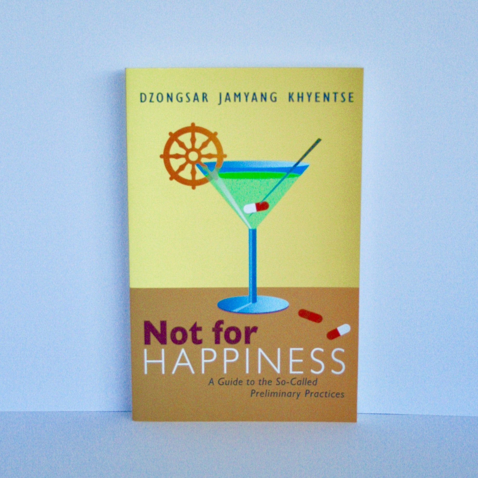 Not for Happiness - A Guide to the So-Called Preliminary Practices by Dzongsar Jamyang Khyentse