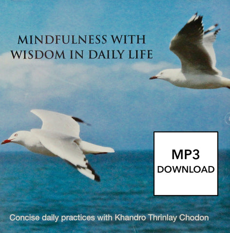 Mindfulness with Wisdom in Daily Life CD - MP3 Download