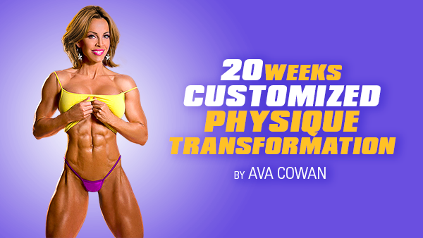 20 Week Customized Physique Transformation