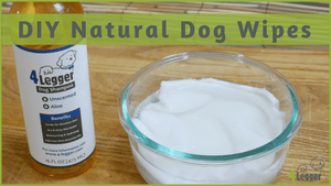 Home Remedies for Dog Allergies | DIY Natural Dog Wipes