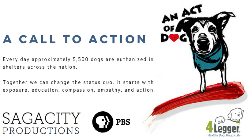 An Act of Dog: World Premier on Public Broadcasting Service (PBS)