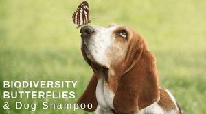 Non-GMO dog shampoo | all natural organic dog shampoo