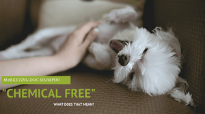 Chemical free dog shampoo for your dog or cat. What does it mean?