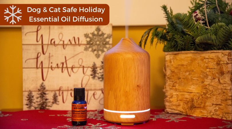 pet safe essential oil holiday diffusion blend gingerbread doghouse by animaleo