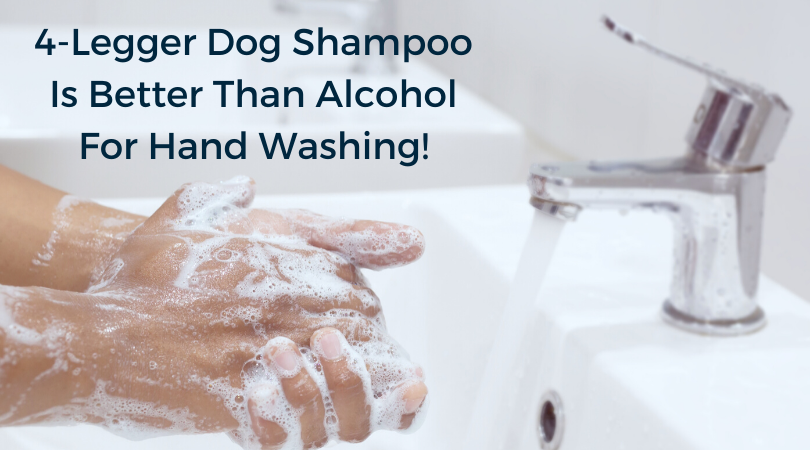 Looking for soap? Use your dog's shampoo