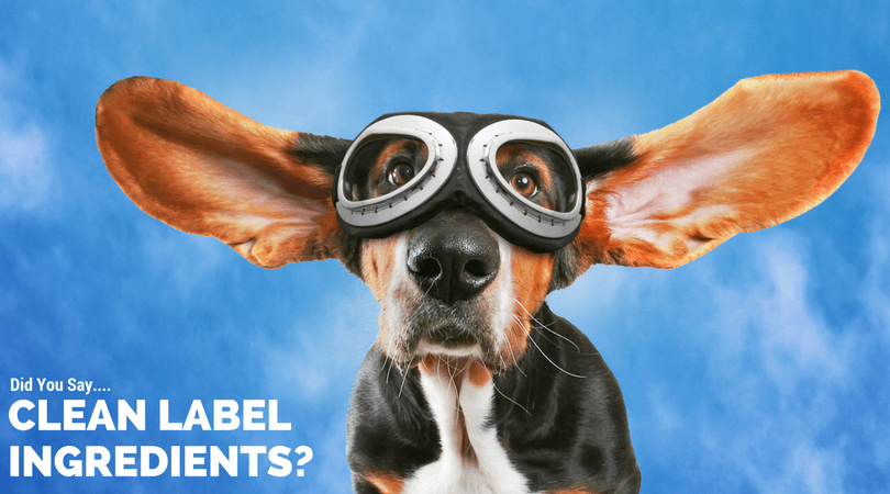 Clean Label Ingredients in Organic Dog Shampoo